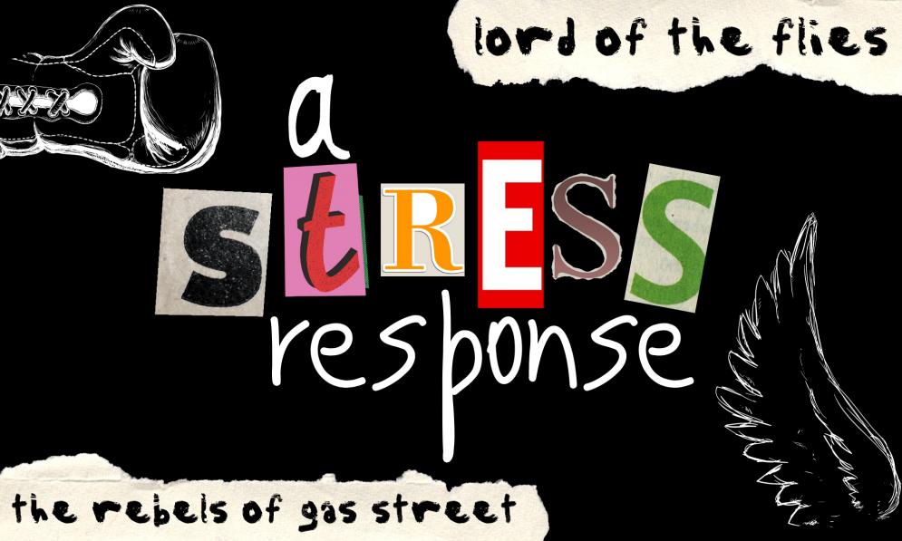 A STRESS RESPONSE